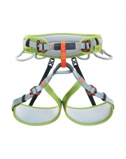 Climbing Technology Ascent - grey/green